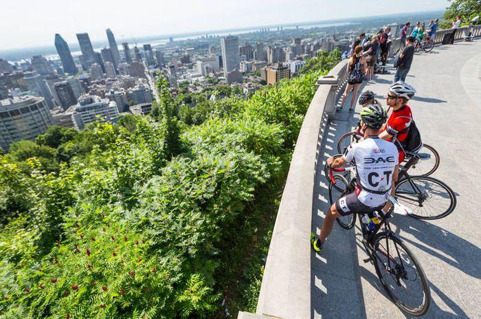 Visiter le Mont Royal à Montreal